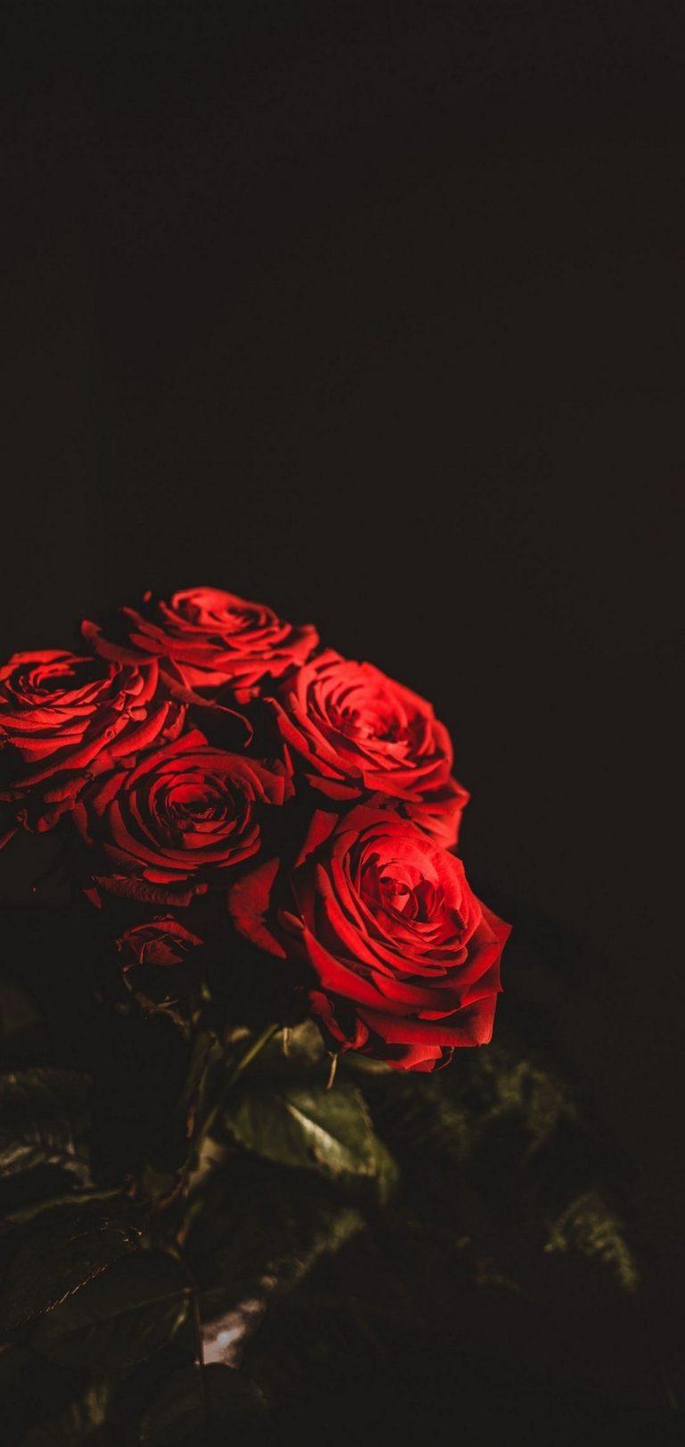 Dark Red Flowers Bouquet Wallpaper 1440x3040 768x1621