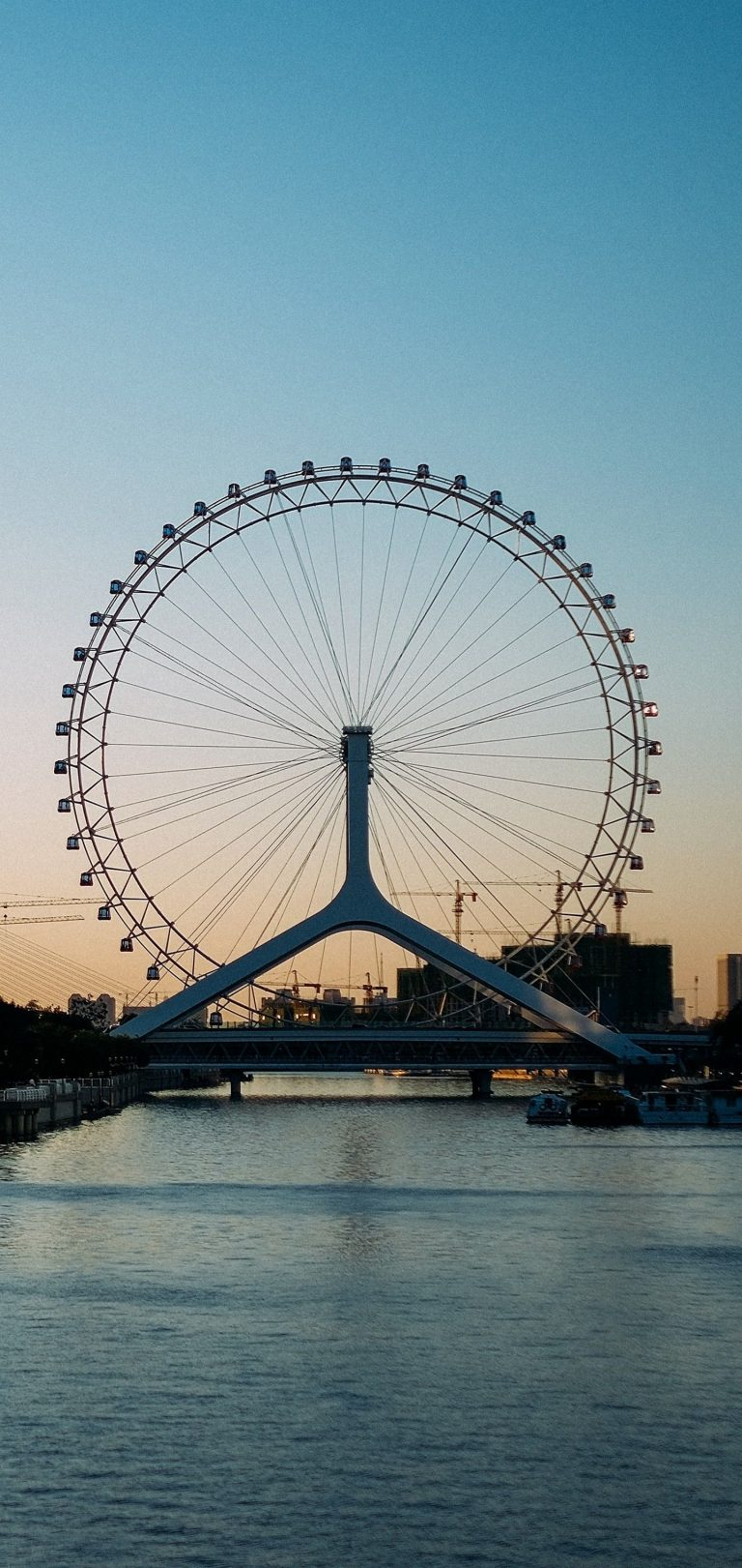 Ferris Wheel City Entertainment Wallpaper 1440x3040 768x1621