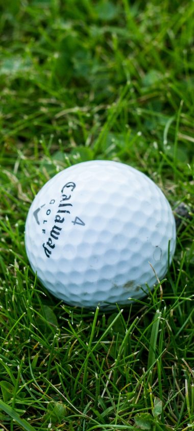 Golf Ball Grass 1080x2400 380x844