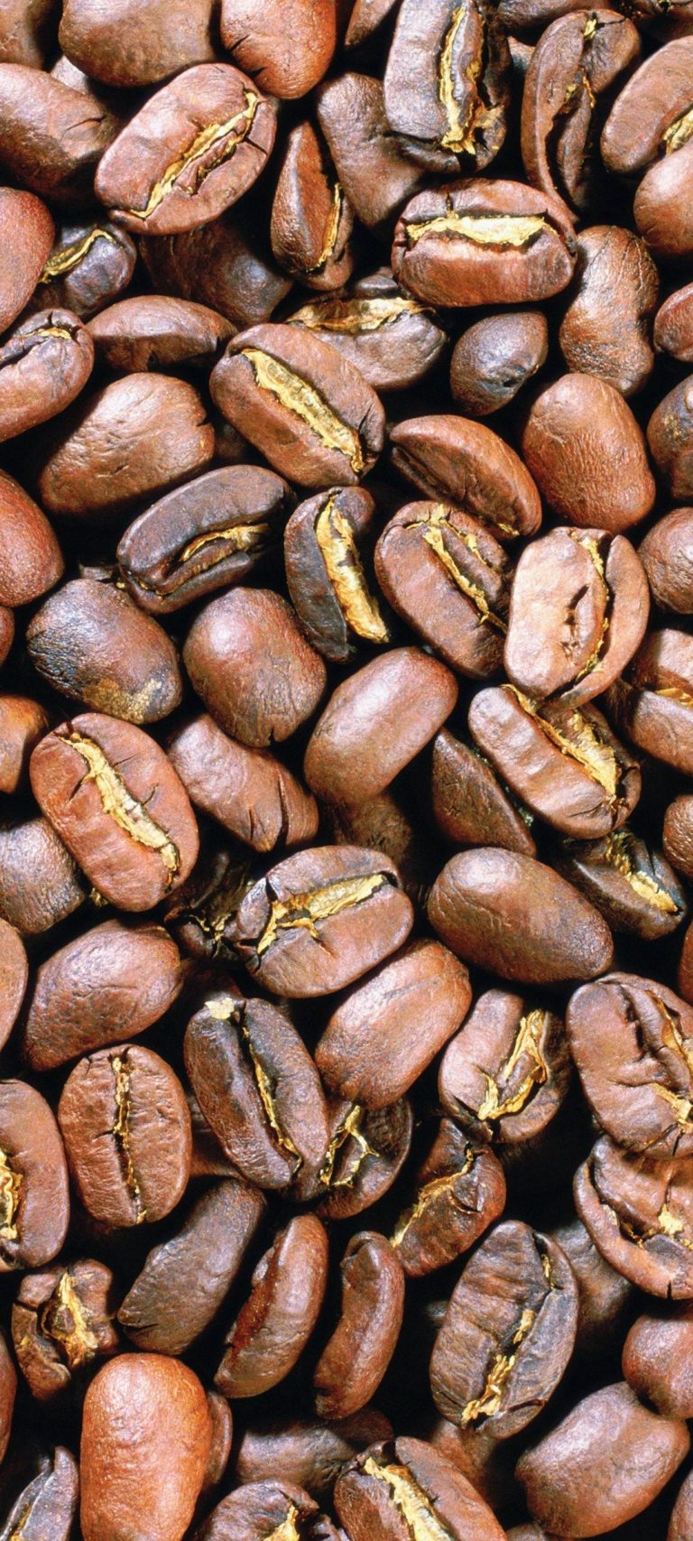 Grains Coffee Background
