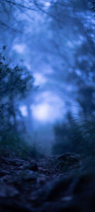 Grass Blur Macro 1080x2400 380x844