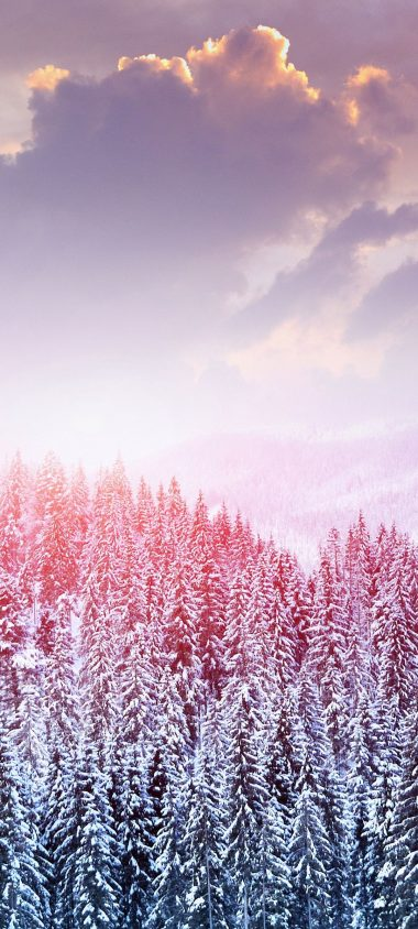 Landscape Winter Snow Trees Mountains 1080x2400 380x844