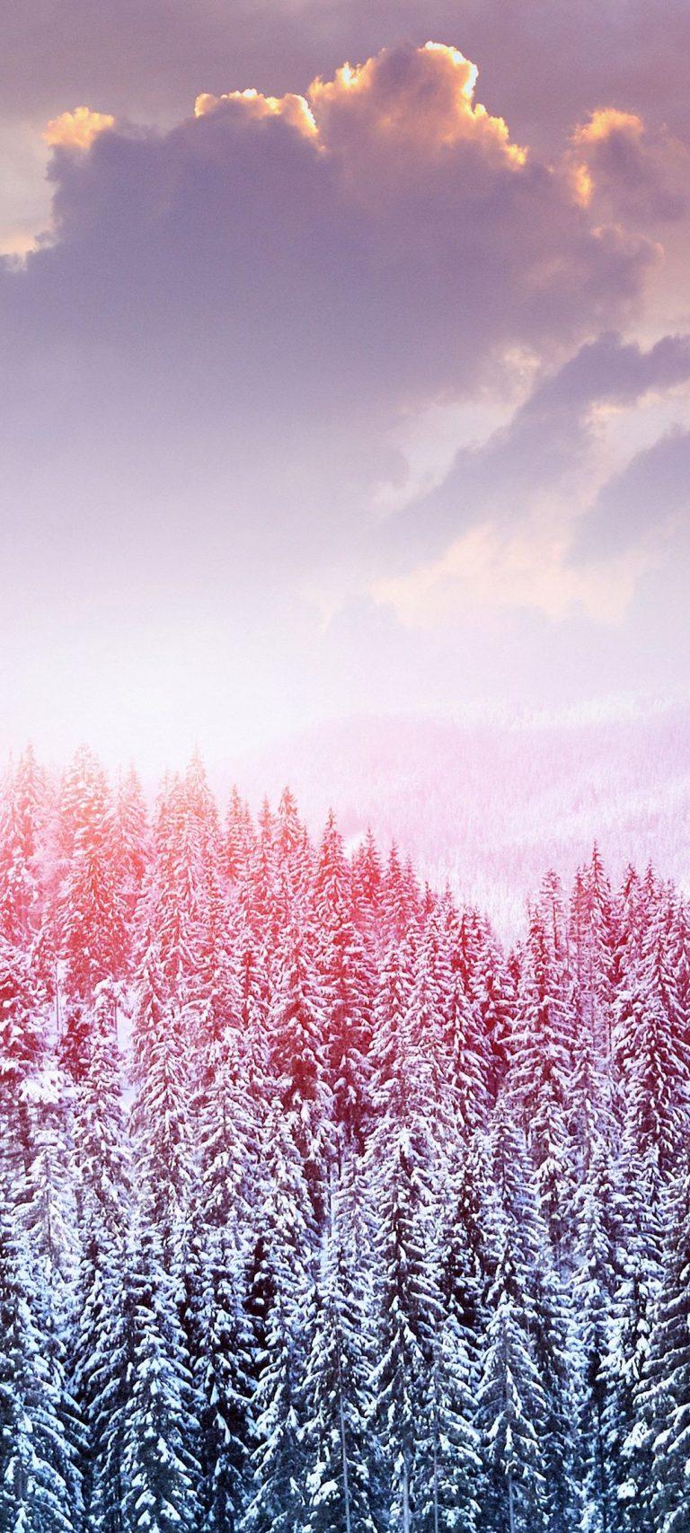 Landscape Winter Snow Trees Mountains 1080x2400 768x1707