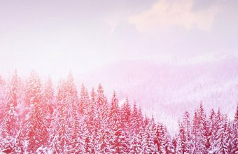 Landscape Winter Snow Trees Mountains Wallpaper 1440x3040 340x220