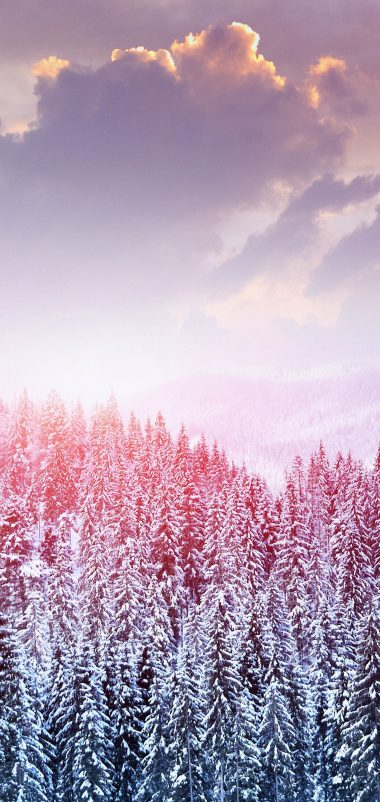 Landscape Winter Snow Trees Mountains Wallpaper 1440x3040 380x802