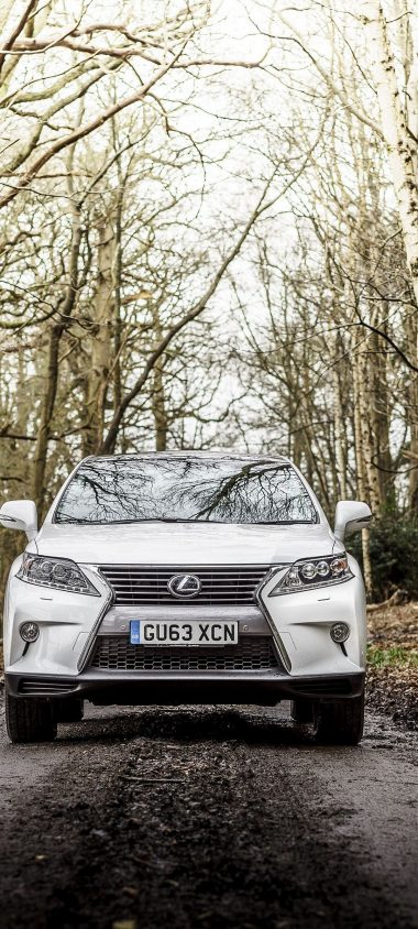 Lexus Rx 450h F Sport Uk Spec White 1080x2400 380x844