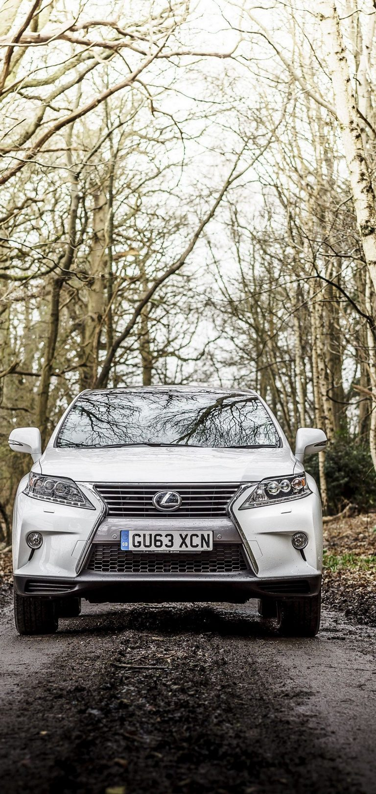 Lexus Rx 450h F Sport Uk Spec White Wallpaper 1440x3040 768x1621