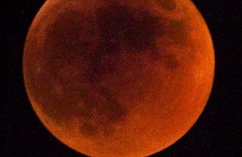 Lunar Eclipse Eclipse Moon Wallpaper 1440x3040 340x220