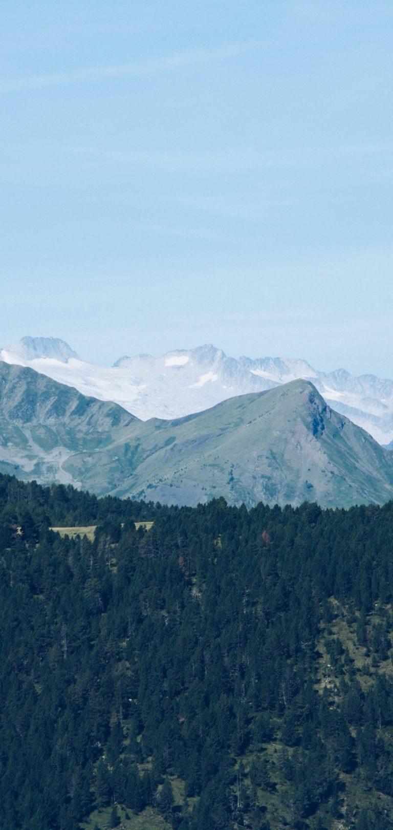 Mountain Range Mountains Trees Wallpaper 1440x3040 768x1621