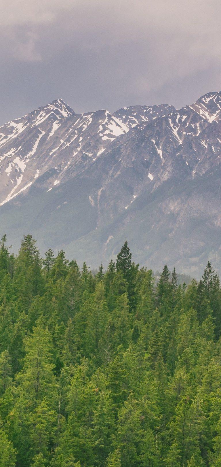 Mountains Hills Distance Wallpaper 1440x3040 768x1621