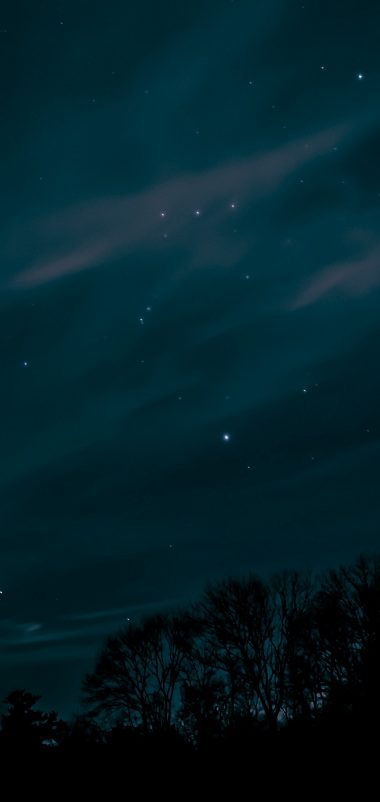 Night Sky Stars Trees Wallpaper 1440x3040 380x802