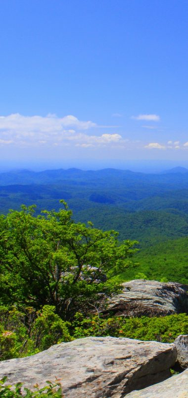 North Carolina Mountains Grass Wallpaper 1440x3040 380x802