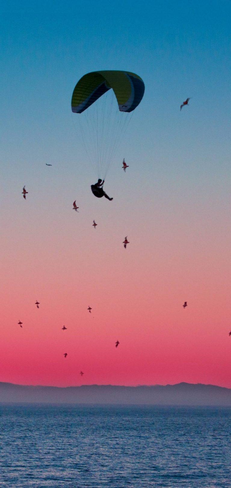 Parachute Flight Sports Wallpaper 1440x3040 768x1621