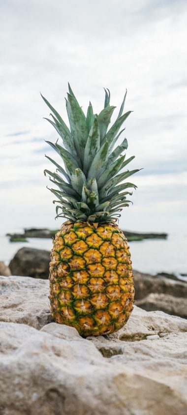 Pineapple Rocks Beach 1080x2400 380x844