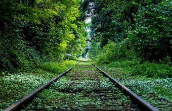 Railroad Grass Trees Wallpaper 1440x3040 340x220