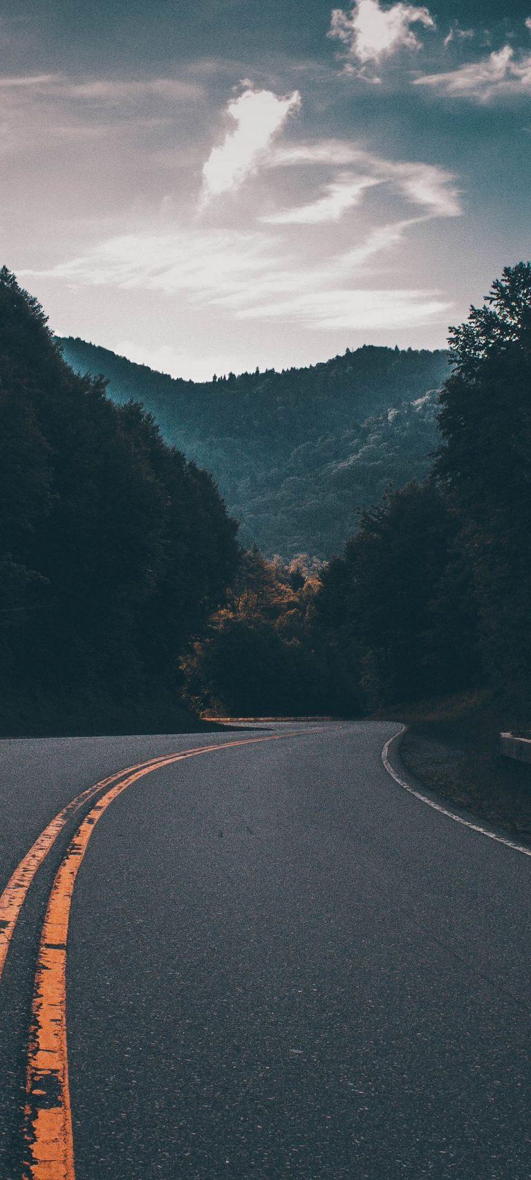 Road Marking Turn Trees 1080x2400 768x1707