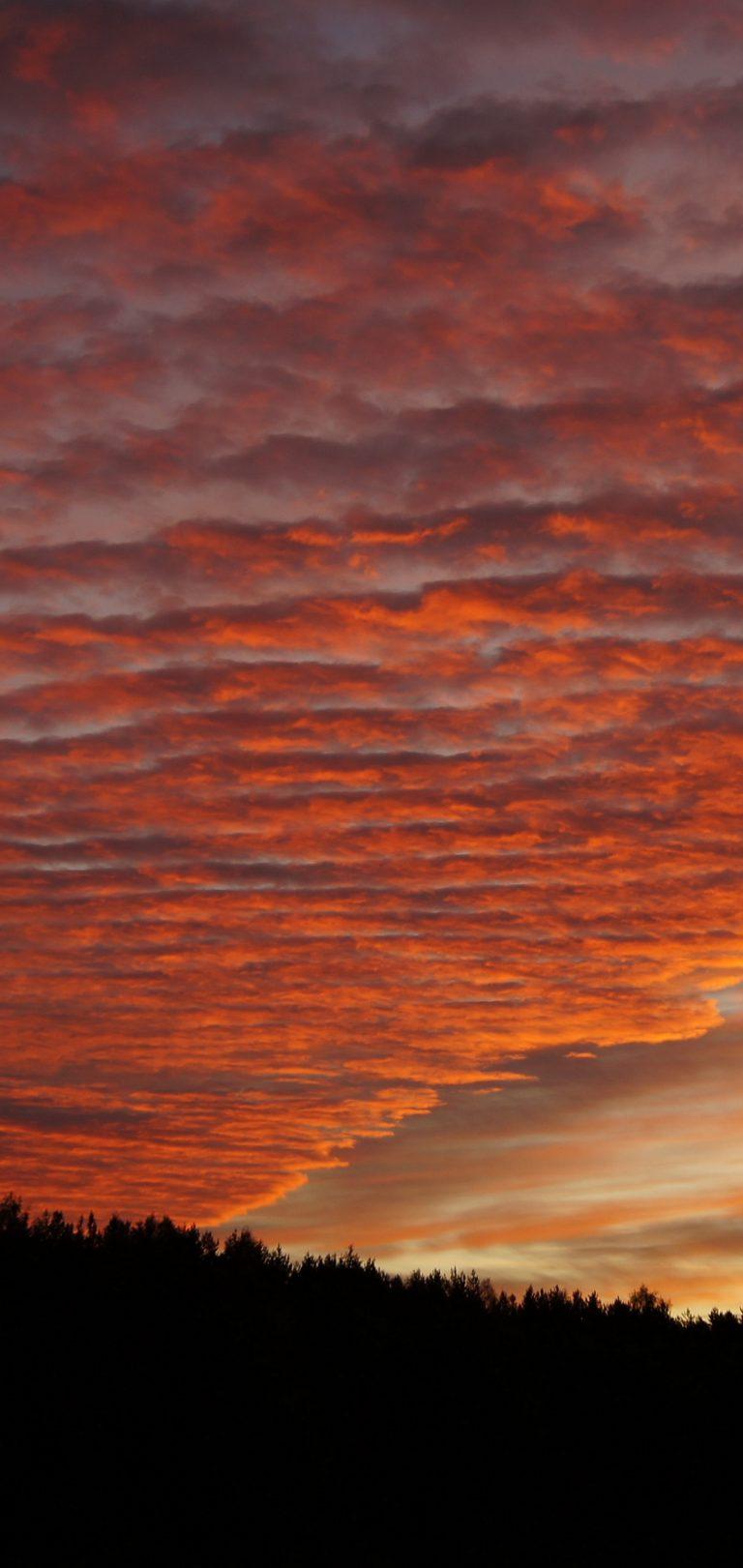Sky Clouds Sunset Beautiful Wallpaper 1440x3040 768x1621
