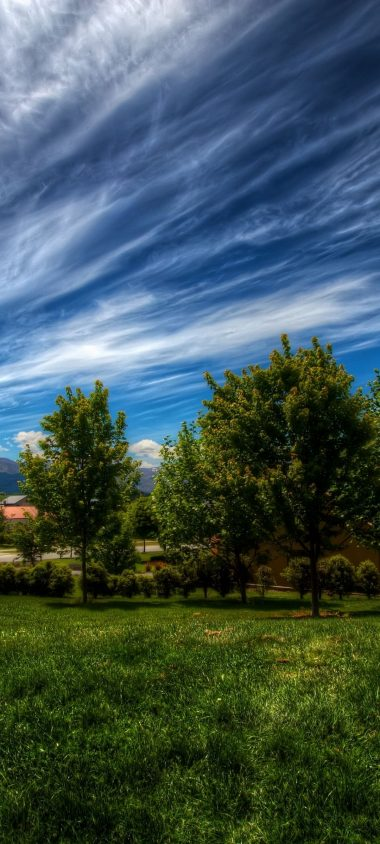 Sky Lines Clouds Trees Grass 1080x2400 380x844