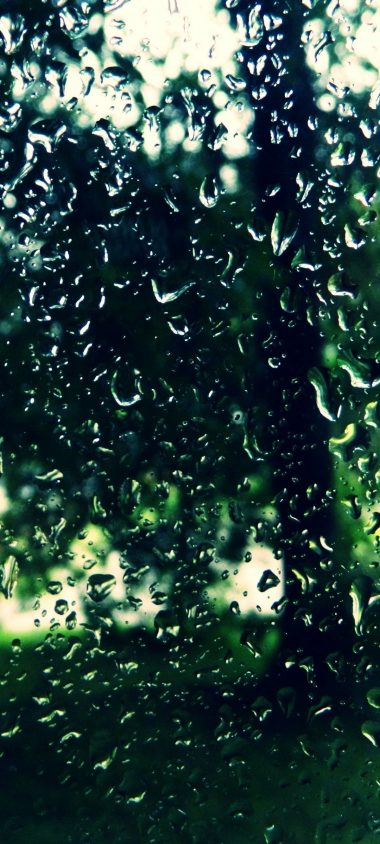 Trees Drops Glass 1080x2400 380x844