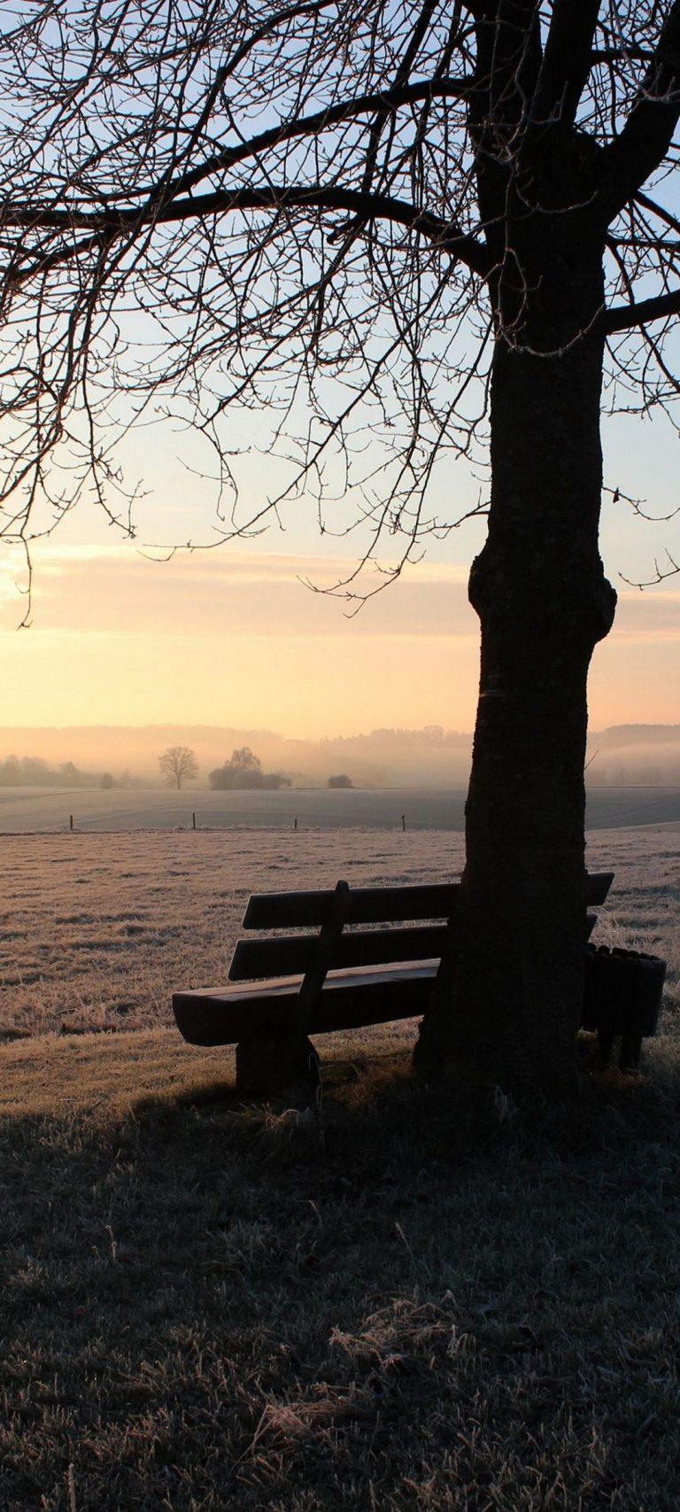 Winter Bench Frost 1080x2400 768x1707