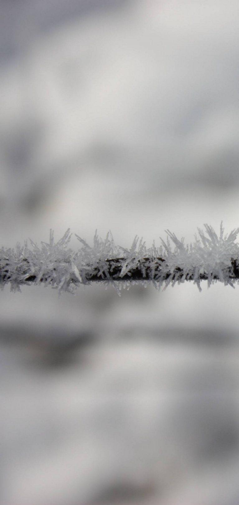 Winter Frozen Snow Wallpaper 1440x3040 768x1621