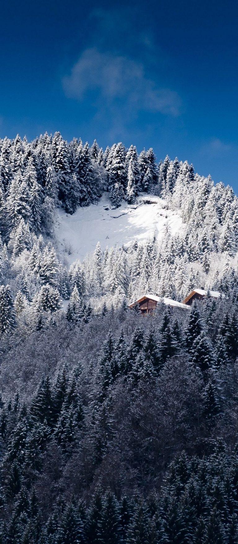 Alps Mountains Snow Trees 1080x2460 768x1749