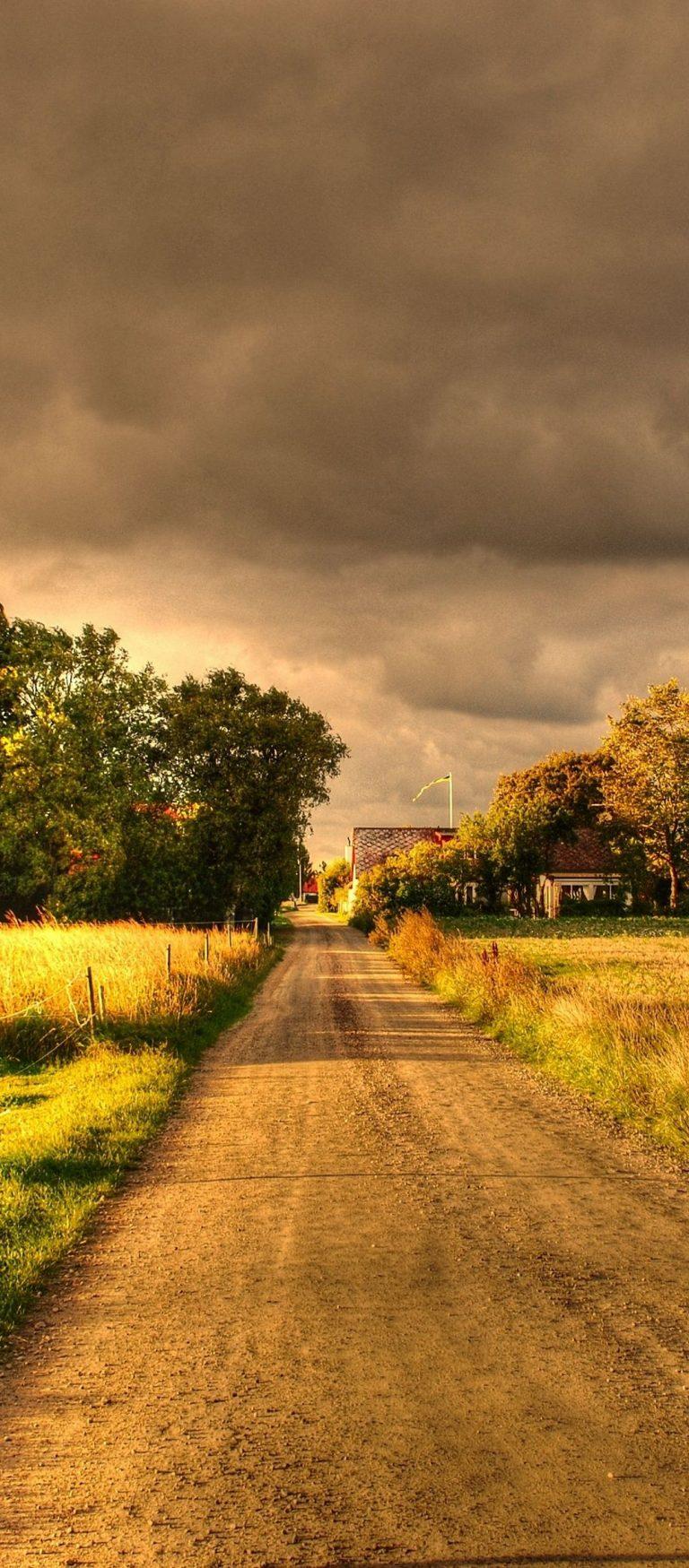 Autumn Field Road Landscape 1080x2460 768x1749