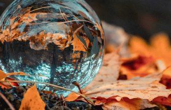 Ball Glass Autumn 1080x2460 340x220