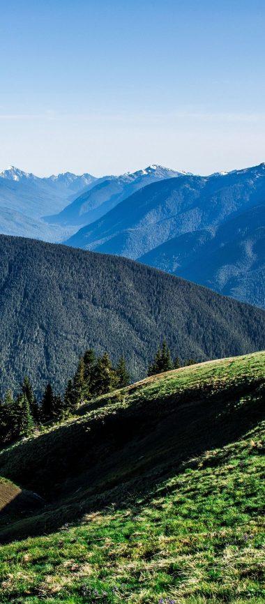 Field Grass Mountains Summer 1080x2460 380x866