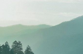 Forest Sky Fog Mountains 1080x2460 340x220