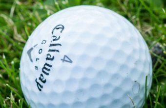 Golf Ball Grass 1080x2460 340x220