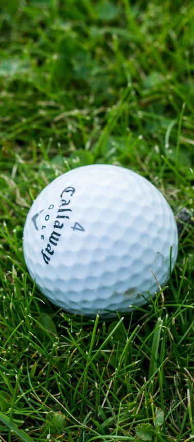 Golf Ball Grass 1080x2460 380x866