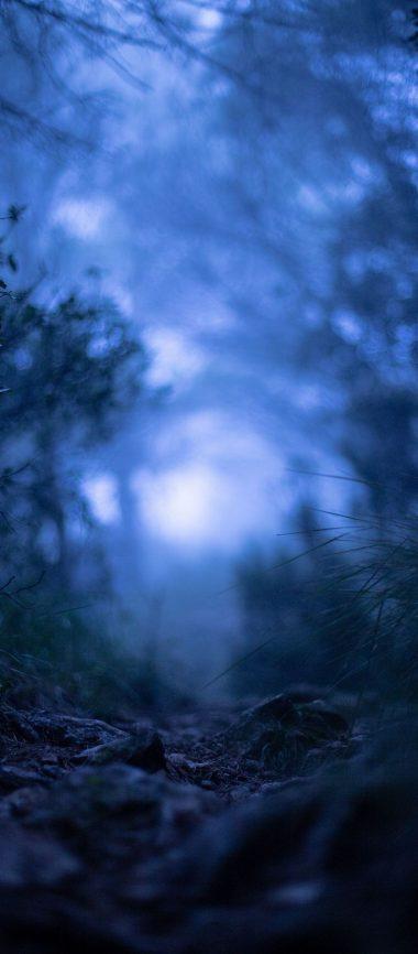 Grass Blur Macro 1080x2460 380x866