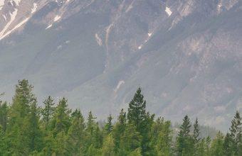 Mountains Hills Distance 1080x2460 340x220