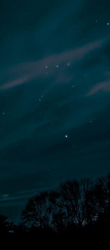 Night Sky Stars Trees 1080x2460 380x866