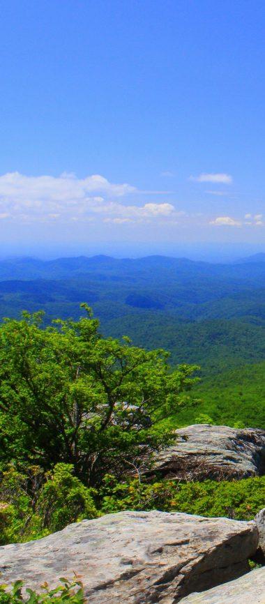 North Carolina Mountains Grass 1080x2460 380x866