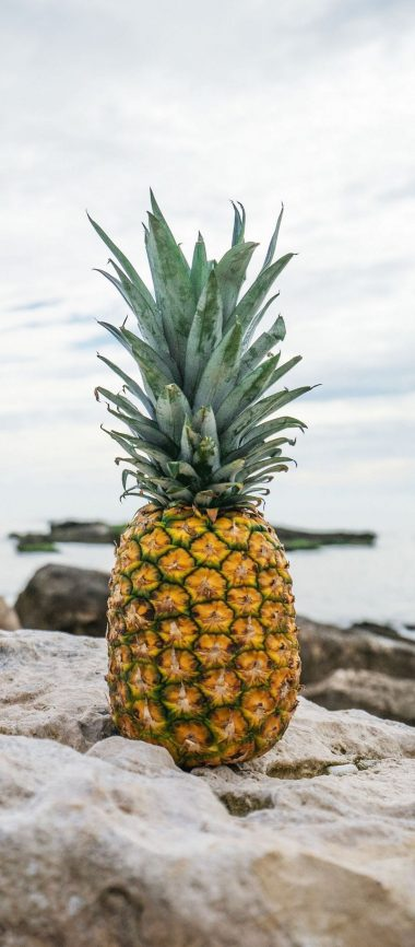 Pineapple Rocks Beach 1080x2460 380x866