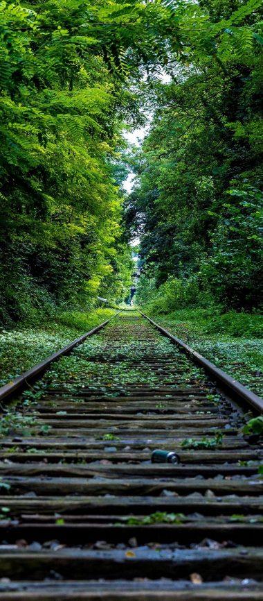 Railroad Grass Trees 1080x2460 380x866