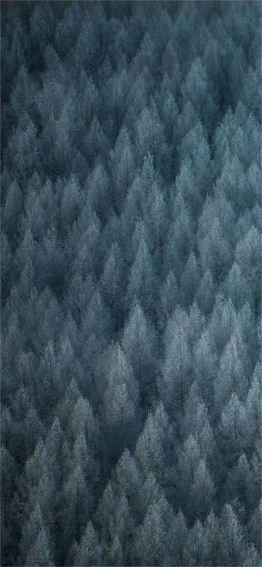 Realme 3 Pro Stock Wallpaper 15 1080x2340 380x823