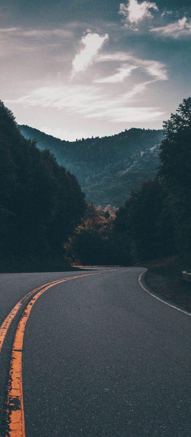Road Marking Turn Trees 1080x2460 380x866