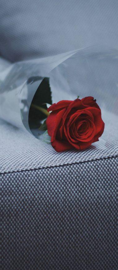 Rose Sofa Furniture 1080x2460 380x866