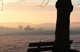Winter Bench Frost 1080x2460 340x220