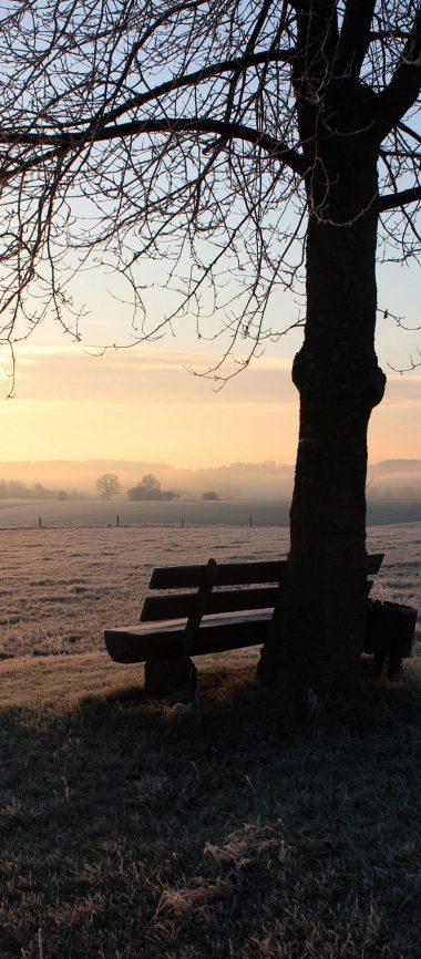 Winter Bench Frost 1080x2460 380x866