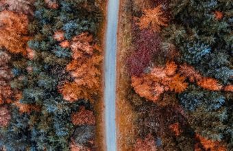Autumn Road Aerial View Wallpaper 720x1544 340x220
