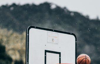 Basketball Ball Basket Wallpaper 720x1544 340x220