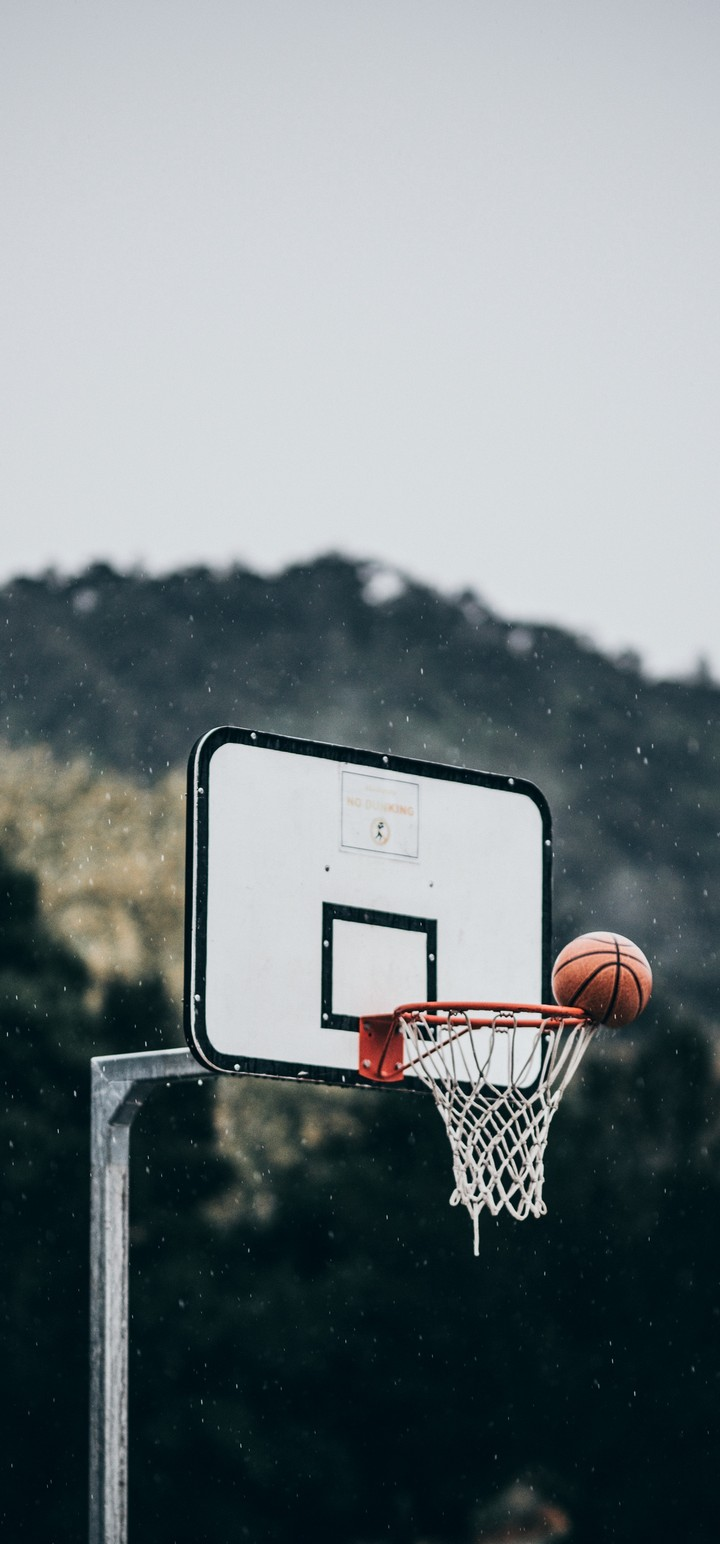 Basketball Ball Basket Wallpaper 720x1544