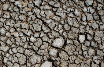 Earth Dry Cracked Wallpaper 720x1544 340x220