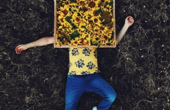 Lonely Field Flowers Wallpaper 720x1544 340x220