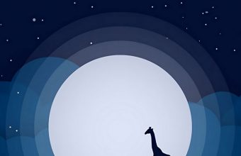 Moon Giraffe Hill Wallpaper 720x1544 340x220