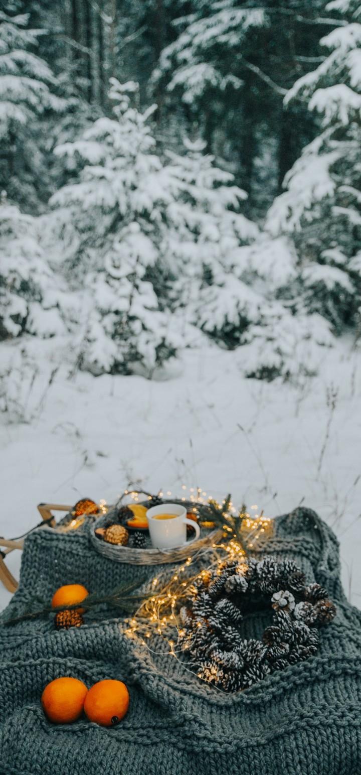 Picnic Comfort Snow Wallpaper 720x1544